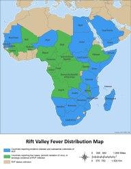 rvf-distribution-map