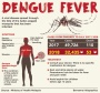 Denggi-infographics